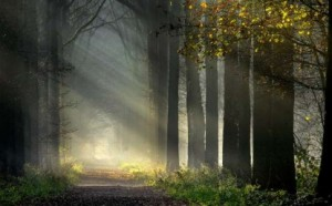 Spiritual-Journey-415x258