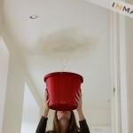 leaky-roof-bucket